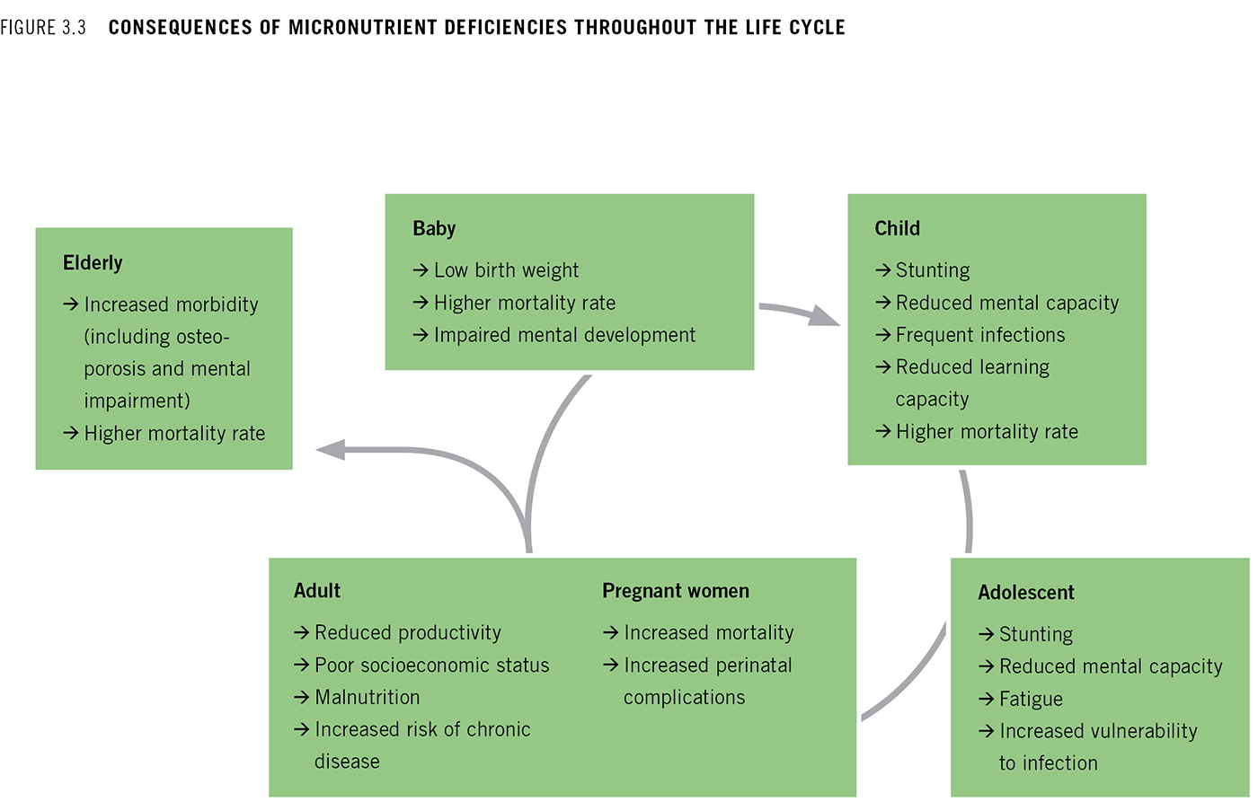Chapter 3 addressing the challenge of hidden hunger flow chart showing consequences of micronutrient deficiencies throughout the life cycle nvjuhfo Image collections
