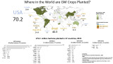 Where in the World are GM crops planted?