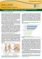 Are Malawi's maize and soya trade restrictions causing more harm than good? A summary of evidence and practical alternatives