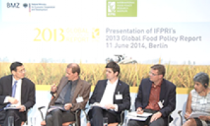 Panelists at the Berlin launch of the Global Food Policy Report (June 11, 2014).