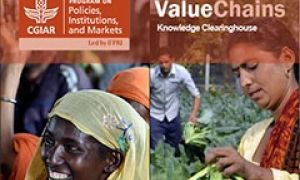 Value Chains Knowledge Clearinghouse