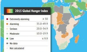 Global Hunger Index 2015 - Severity Scale