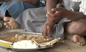 Closeup of child's hand reaching in plate of chapati