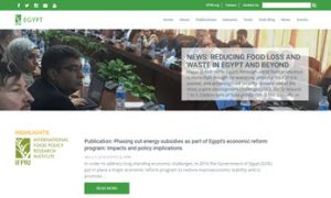 Egypt SSP Website