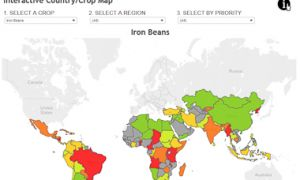 Biofortification Priority Index