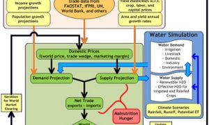 International Model for Policy Analysis of Agricultural Commodities and Trade (IMPACT) Model