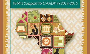 Cover image detail - IFPRI's support to CAADP in 2014-2015