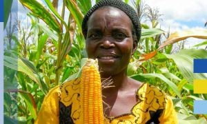 IFPRI food policy research for the EC - Female farmer with maize