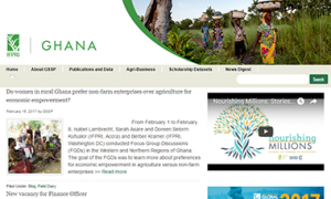 Ghana Strategy Support Program Website