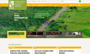 IFPRI Website