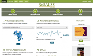 RESAKSS Website