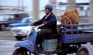 """Man on a """"Zaporozgets"""" - Soviet era motorized tricycle used for transporting smaller loads. Uzbekistan."""