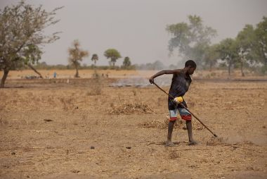 A young boy rakes away ground cover in farmland affected by wind erosion in Senegal.