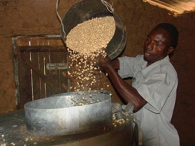 A farmer from Embu, Kenya, demonstrates the loading of maize grain into a metal silo for storage