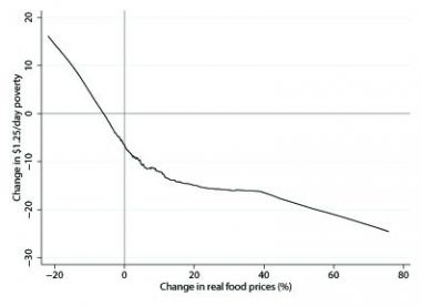 A LOWESS prediction of the relationship between changes in real food prices and changes in $1.25/day poverty headcounts