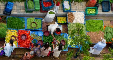 Trade and transport options to food security