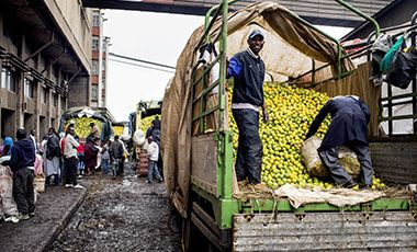 Lemons being unloaded from trucks at Wakulima Market in downtown Nairobi.