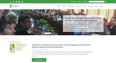 Egypt SSP Website