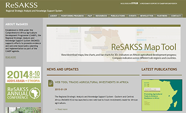 Screenshot of ReSAKSS website