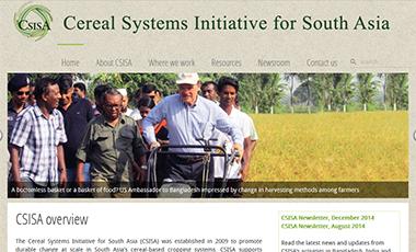 Screenshot of the CSISA website