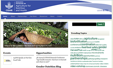 Agriculture for Nutrition and Health website
