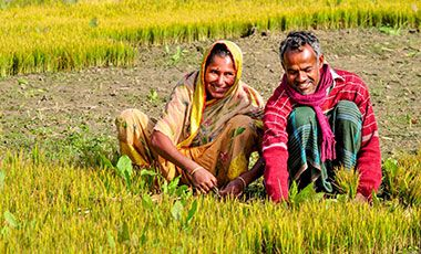 Smiling man and woman in golden field
