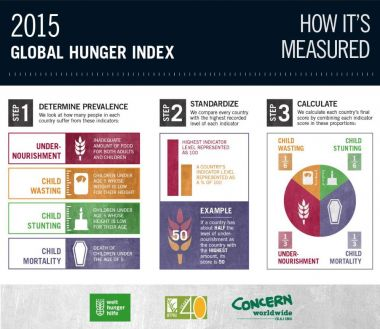 2015 Global Hunger Index: How it's measured