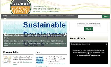 Global Nutrition Report website