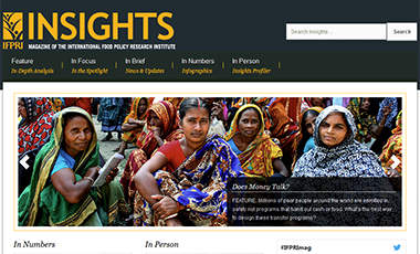 Screenshot of the Insights Magazine website