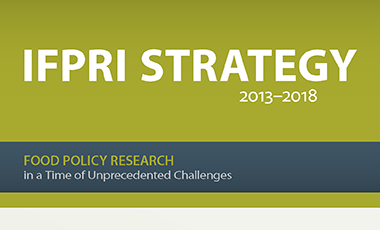 detail from cover image of IFPRI Strategy document