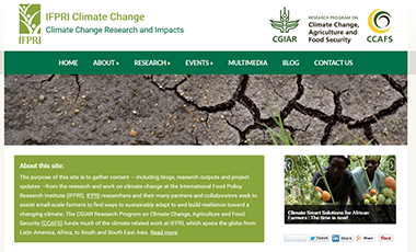 Screenshot of the IFPRI climate change website
