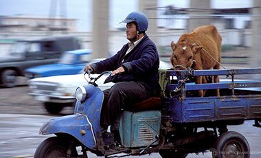 "Man on a ""Zaporozgets"" - Soviet era motorized tricycle used for transporting smaller loads. Uzbekistan."