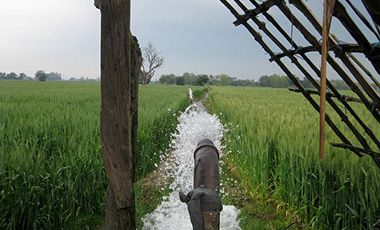 Leveled field being irrigated in eastern Uttar Pradesh, India